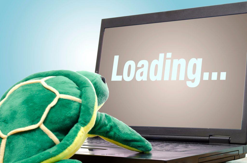 Turtle browsing indicating slow internet